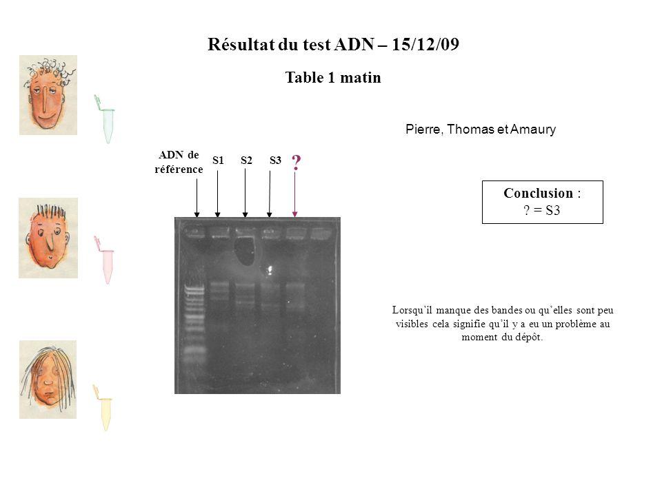 Résultat du test ADN – 15/12/09 Table 1 matin ADN de référence S2S1S3 ? Conclusion : ? = S3 Lorsqu'il manque des bandes ou qu'elles sont peu visibles