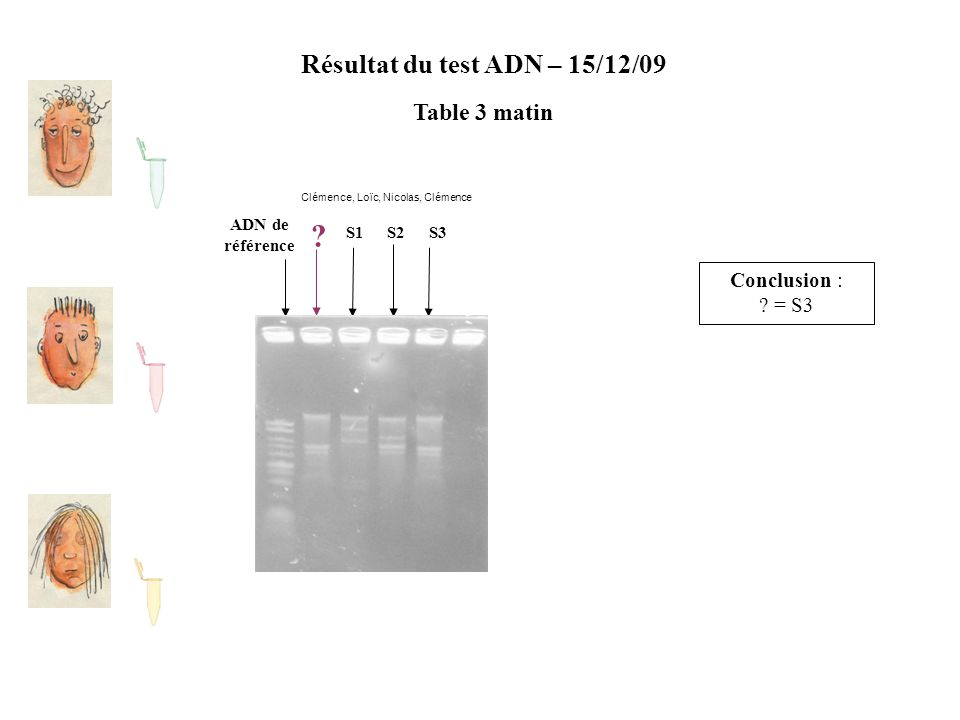 Résultat du test ADN – 15/12/09 Table 3 matin ADN de référence S2S1S3 ? Conclusion : ? = S3 Clémence, Loïc, Nicolas, Clémence