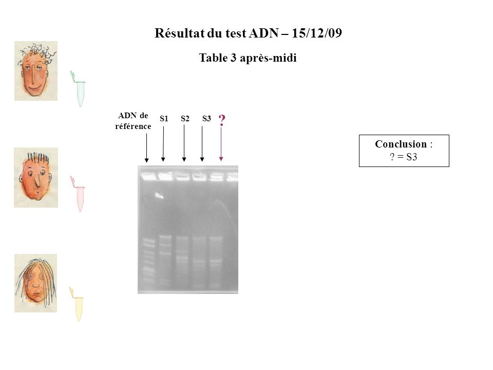 Résultat du test ADN – 15/12/09 Table 3 après-midi ADN de référence S2S1S3 ? Conclusion : ? = S3