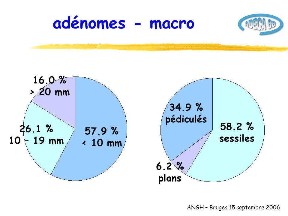 ANGH – Bruges 15 septembre 2006 adénomes - macro 34.9 % pédiculés 6.2 % plans 58.2 % sessiles 57.9 % < 10 mm 16.0 % > 20 mm 26.1 % 10 – 19 mm