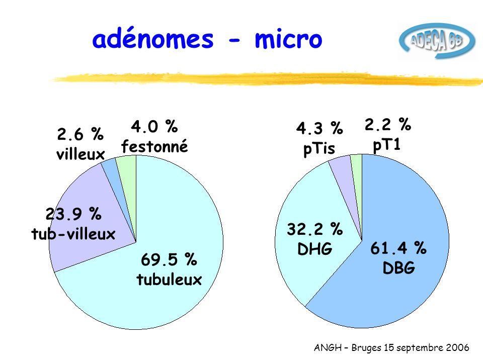 ANGH – Bruges 15 septembre 2006 adénomes - micro 2.6 % villeux 23.9 % tub-villeux 69.5 % tubuleux 61.4 % DBG 4.3 % pTis 32.2 % DHG 4.0 % festonné 2.2 % pT1