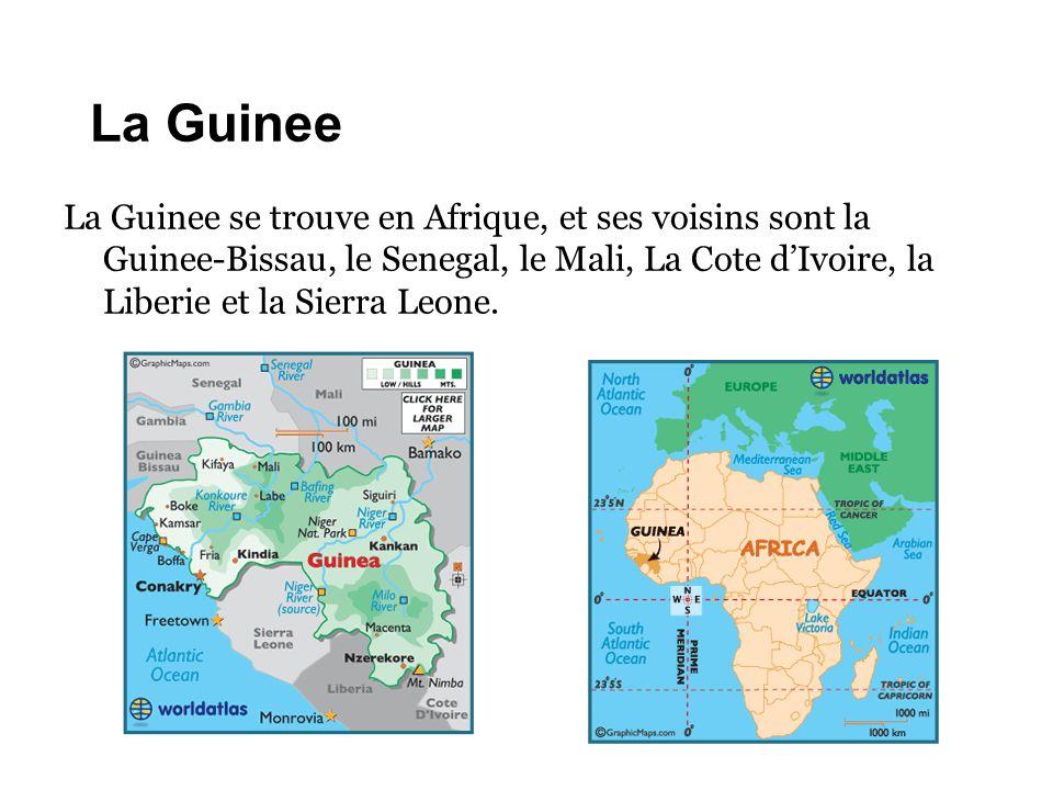 La Guinee La Guinee se trouve en Afrique, et ses voisins sont la Guinee-Bissau, le Senegal, le Mali, La Cote d'Ivoire, la Liberie et la Sierra Leone.