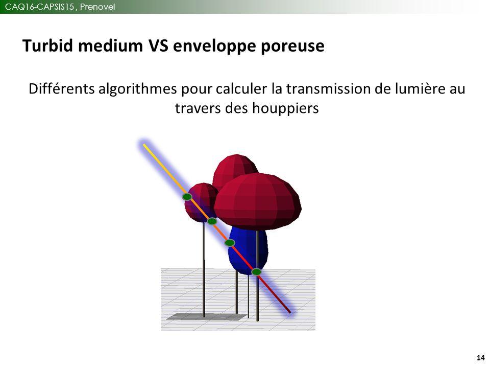 CAQ16-CAPSIS15, Prenovel 14 Turbid medium VS enveloppe poreuse Différents algorithmes pour calculer la transmission de lumière au travers des houppiers