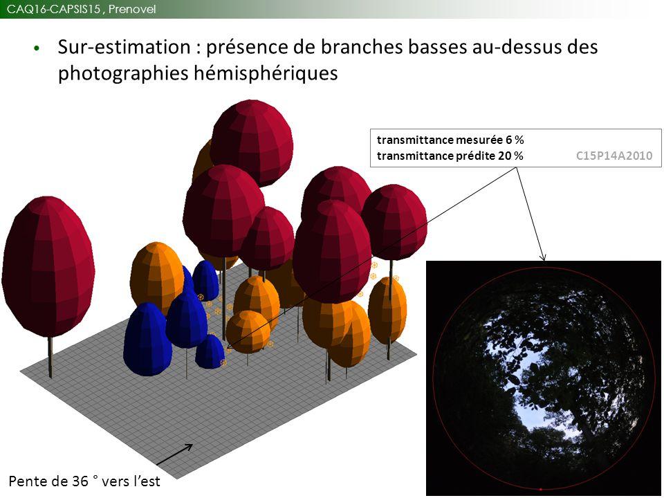 CAQ16-CAPSIS15, Prenovel 27 Sur-estimation : présence de branches basses au-dessus des photographies hémisphériques Pente de 36 ° vers l'est transmittance mesurée 6 % transmittance prédite 20 % C15P14A2010