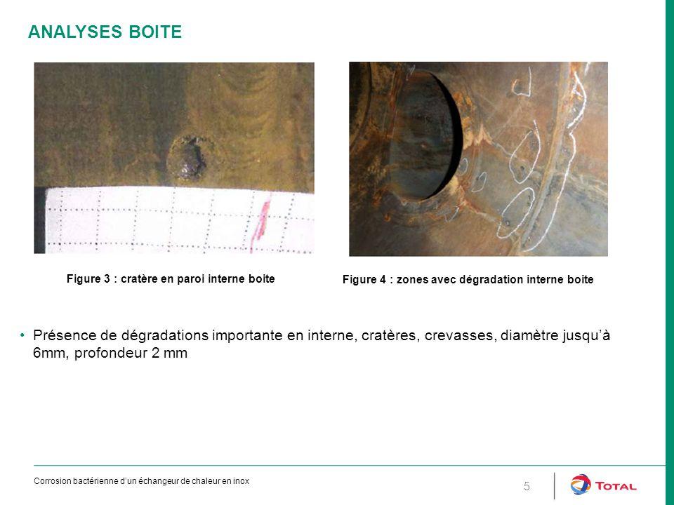 6 ANALYSES CALANDRE Figure 5 : dégradation en interne calandre Dégradations moins prononcées que côté boite et faisceau Présence de dépôts rougeâtres, jaunâtres, particulièrement dans les zones de forte rugosité Corrosion bactérienne d'un échangeur de chaleur en inox