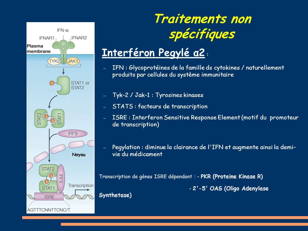 Traitements non spécifiques ● Interféron Pegylé α2 : – IFN : Glycoprotéines de la famille ds cytokines / naturellement produits par cellules du systèm