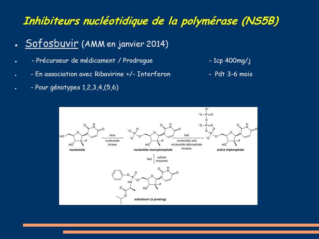 ● Sofosbuvir (AMM en janvier 2014) ● - Précurseur de médicament / Prodrogue - 1cp 400mg/j ● - En association avec Ribavirine +/- Interferon - Pdt 3-6