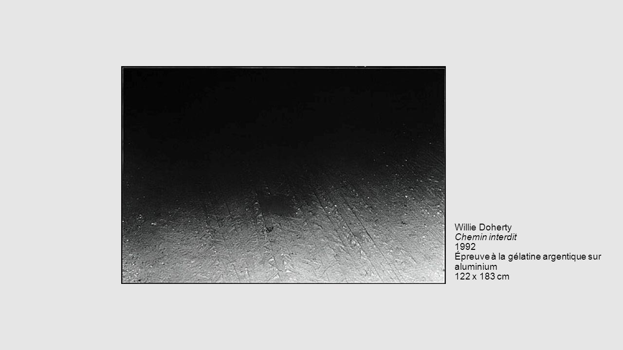 Willie Doherty Chemin interdit 1992 Épreuve à la gélatine argentique sur aluminium 122 x 183 cm