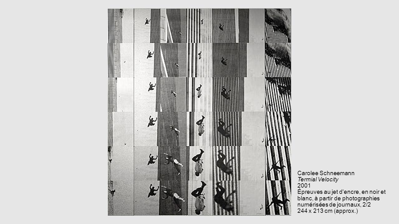 Carolee Schneemann Termial Velocity 2001 Épreuves au jet d'encre, en noir et blanc, à partir de photographies numérisées de journaux, 2/2 244 x 213 cm