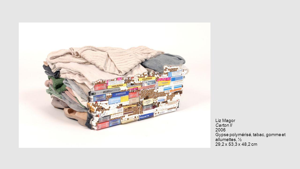 Liz Magor Carton II 2006 Gypse polymérisé, tabac, gomme et allumettes, ½ 29,2 x 53,3 x 48,2 cm
