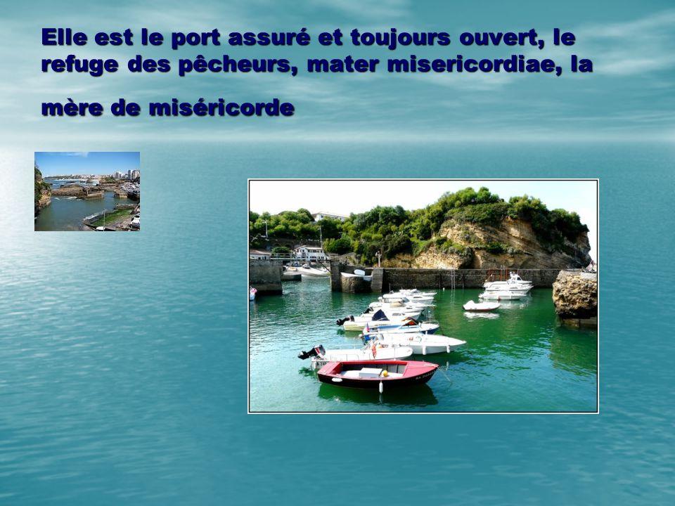 Elle est le port assuré et toujours ouvert, le refuge des pêcheurs, mater misericordiae, la mère de miséricorde