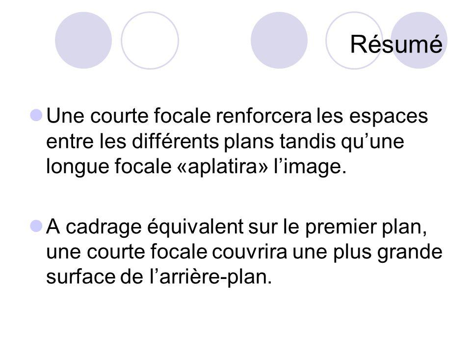 Résumé Une courte focale renforcera les espaces entre les différents plans tandis qu'une longue focale «aplatira» l'image.