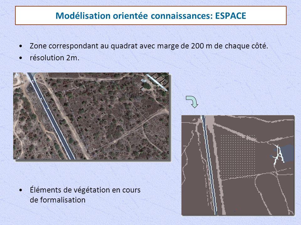 Modélisation orientée connaissances: ESPACE Zone correspondant au quadrat avec marge de 200 m de chaque côté. résolution 2m. Éléments de végétation en