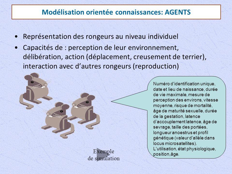 Modélisation orientée connaissances: AGENTS Représentation des rongeurs au niveau individuel Capacités de : perception de leur environnement, délibéra