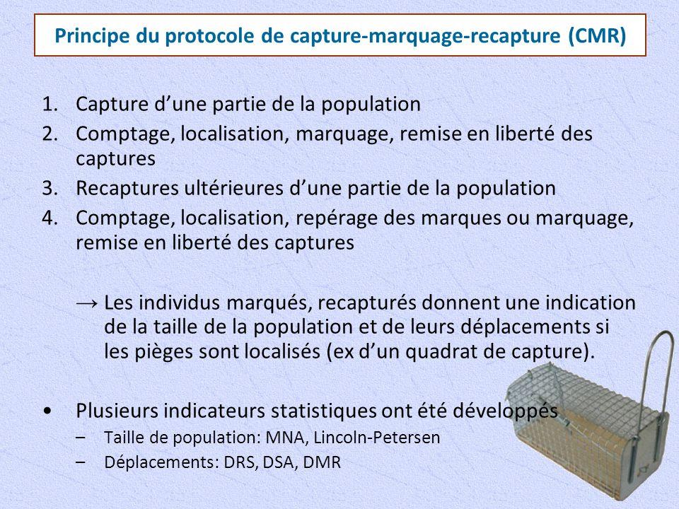 Principe du protocole de capture-marquage-recapture (CMR) 1.Capture d'une partie de la population 2.Comptage, localisation, marquage, remise en libert