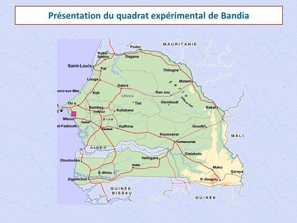 Présentation du quadrat expérimental de Bandia
