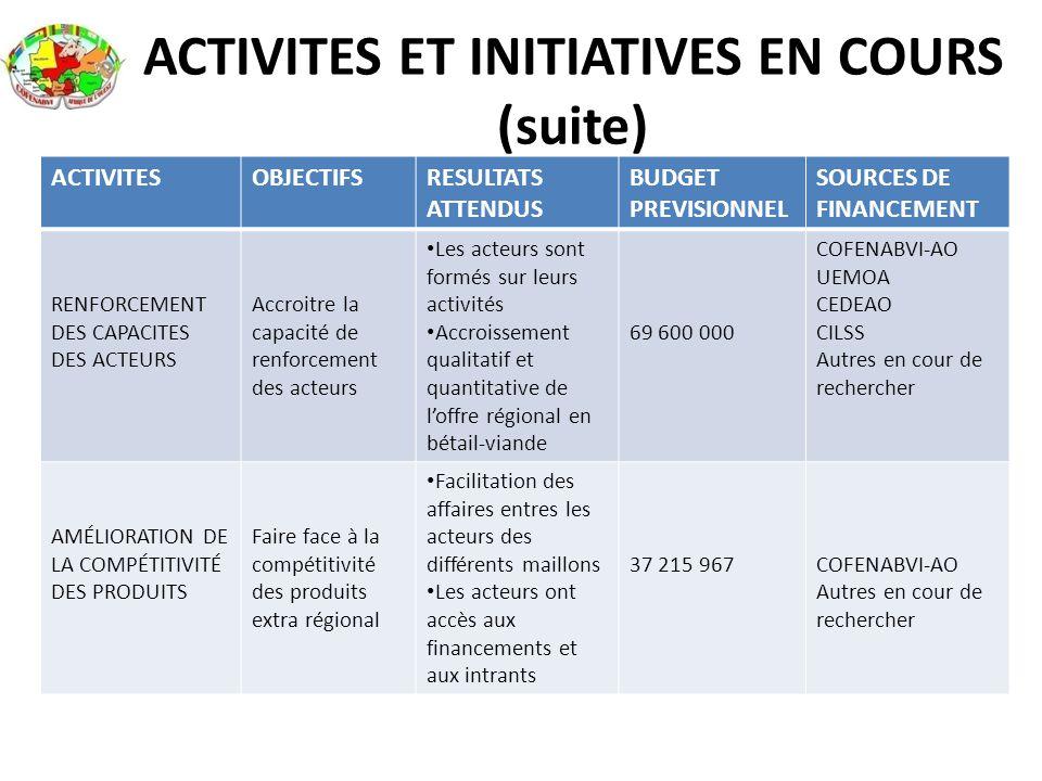 ACTIVITES ET INITIATIVES EN COURS (suite) ACTIVITESOBJECTIFSRESULTATS ATTENDUS BUDGET PREVISIONNEL SOURCES DE FINANCEMENT RENFORCEMENT DES CAPACITES D
