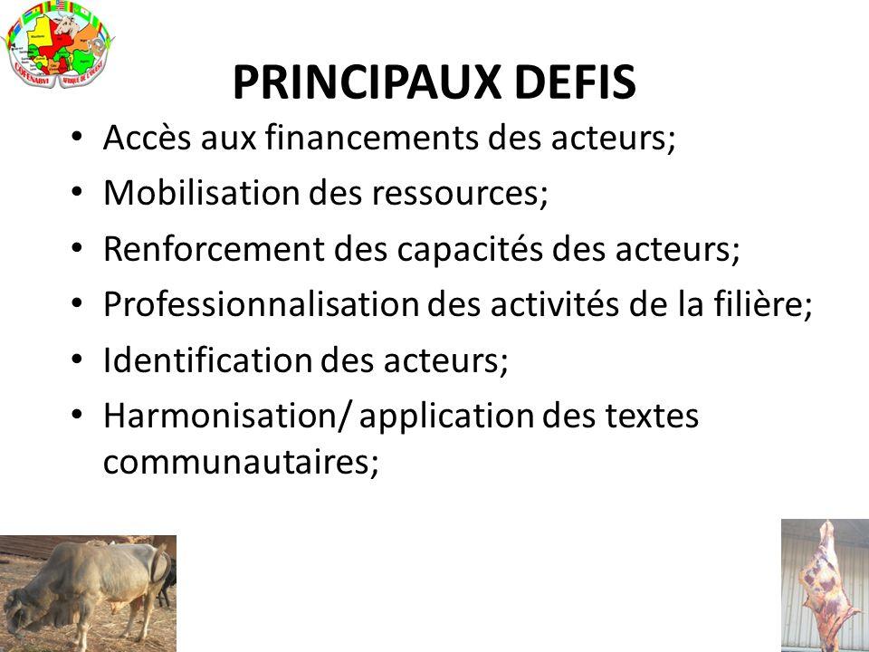 PRINCIPAUX DEFIS Accès aux financements des acteurs; Mobilisation des ressources; Renforcement des capacités des acteurs; Professionnalisation des act