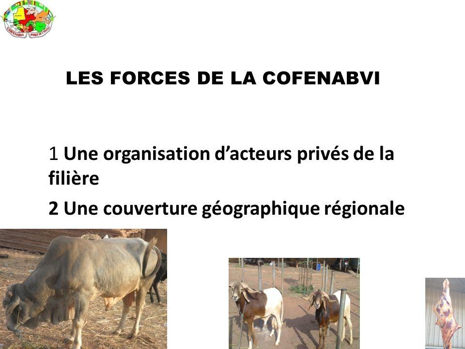 LES FORCES DE LA COFENABVI 1 Une organisation d'acteurs privés de la filière 2 Une couverture géographique régionale