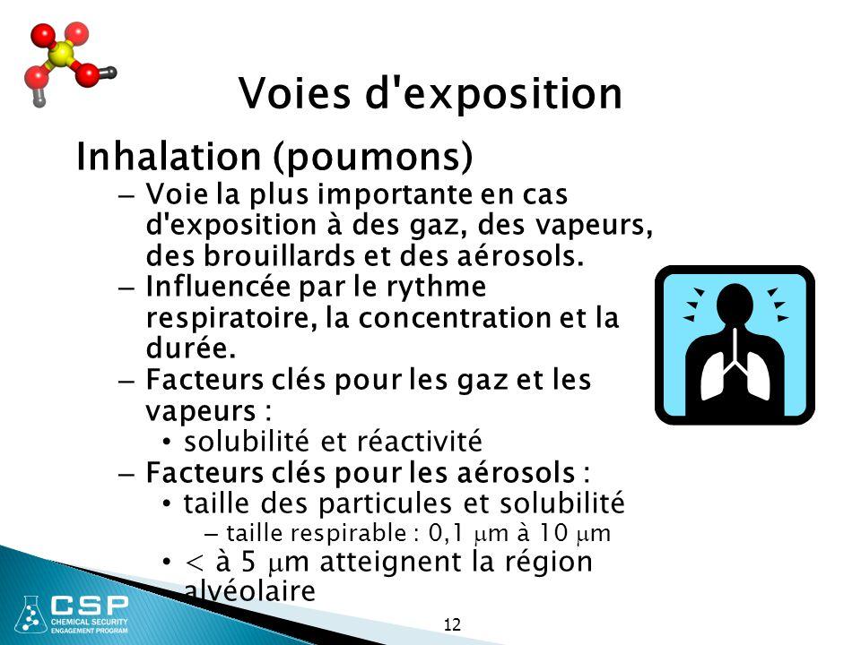 12 Voies d'exposition Inhalation (poumons) – Voie la plus importante en cas d'exposition à des gaz, des vapeurs, des brouillards et des aérosols. – In