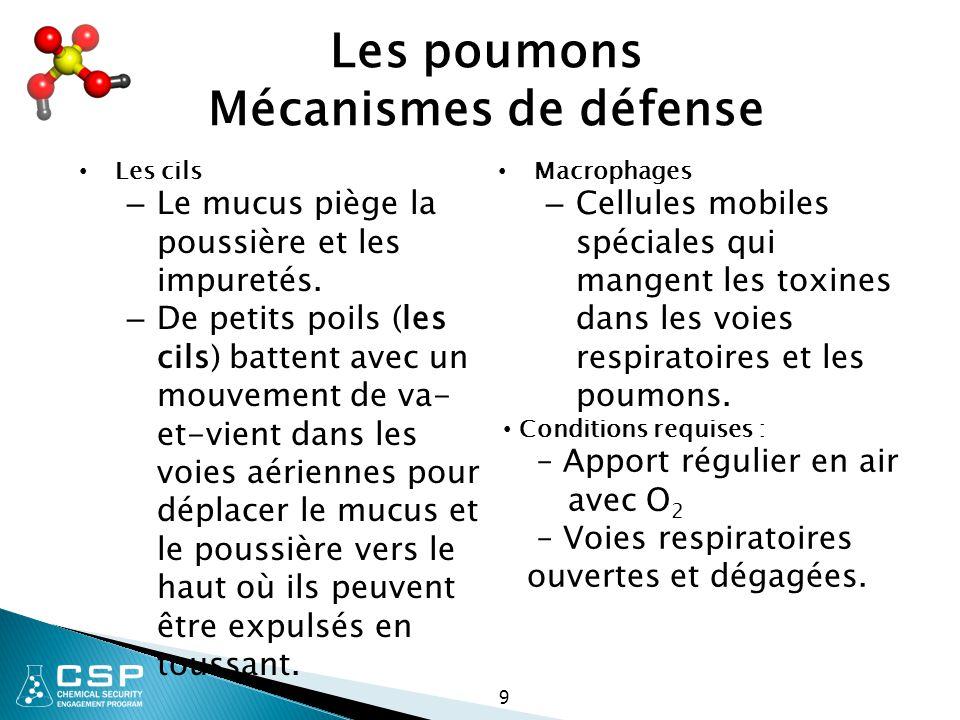 70 Organes cibles Toxicité maternelle :  Raréfaction de l oxygène  Apport de nutriments  Plomb ou autres métaux