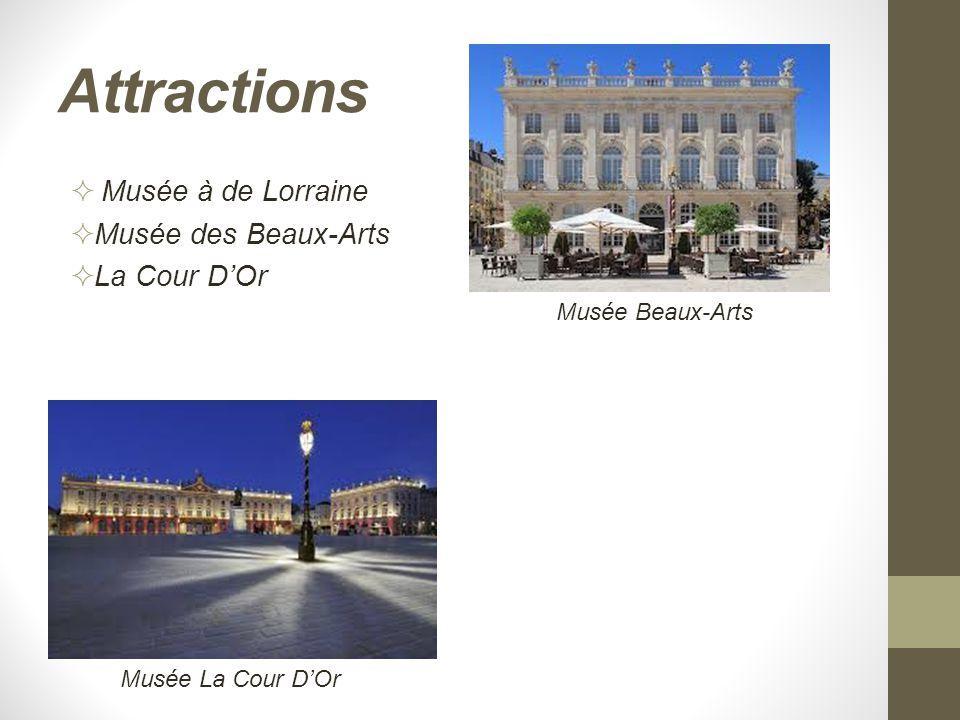 Attractions  Musée à de Lorraine  Musée des Beaux-Arts  La Cour D'Or Musée La Cour D'Or Musée Beaux-Arts