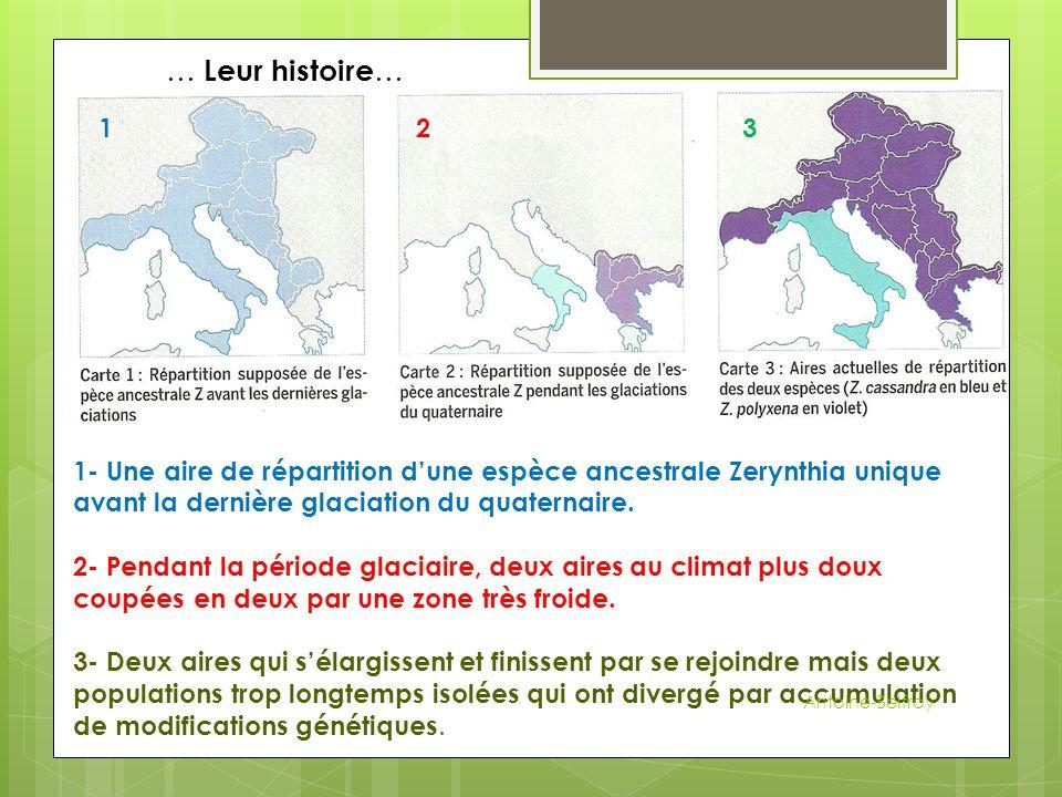 1- Une aire de répartition d'une espèce ancestrale Zerynthia unique avant la dernière glaciation du quaternaire. 2- Pendant la période glaciaire, deux