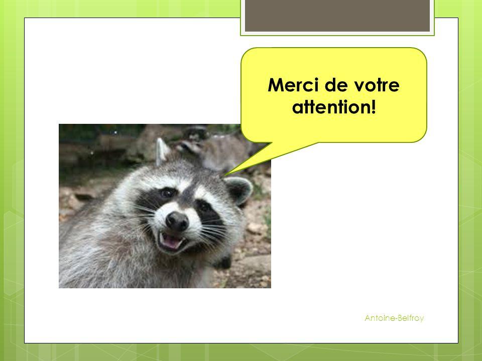 Merci de votre attention! Antoine-Belfroy