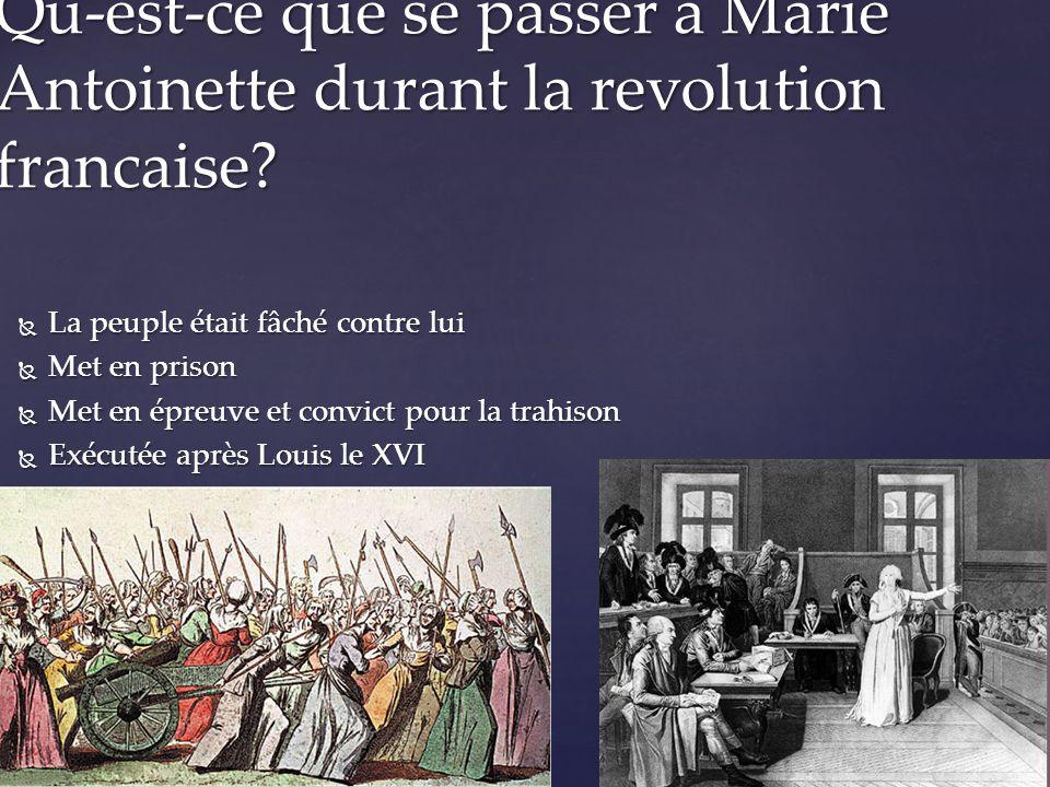  La peuple était fâché contre lui  Met en prison  Met en épreuve et convict pour la trahison  Exécutée après Louis le XVI .
