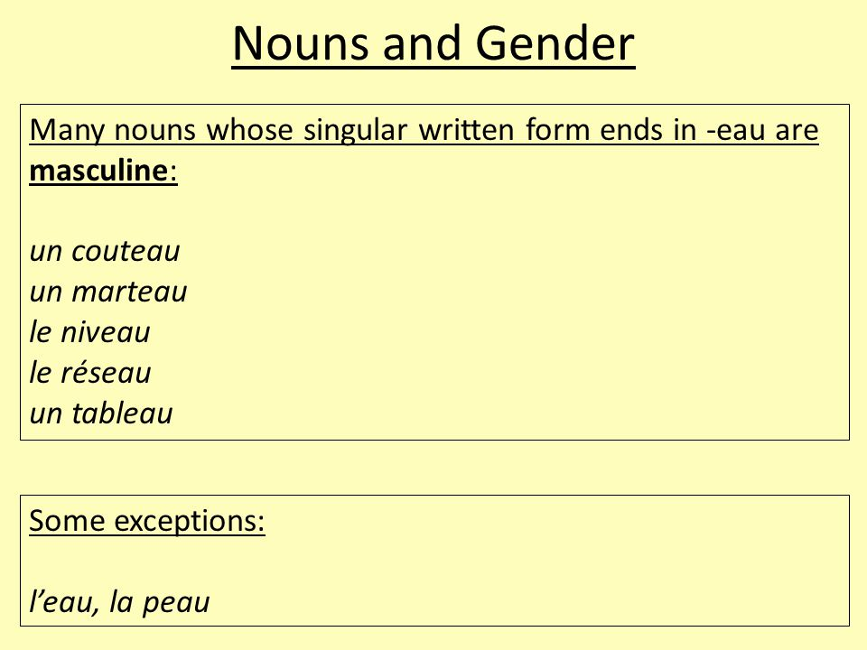 Nouns and Gender Many nouns whose singular written form ends in -eau are masculine: un couteau un marteau le niveau le réseau un tableau Some exceptions: l'eau, la peau