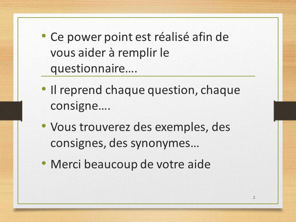 Ce power point est réalisé afin de vous aider à remplir le questionnaire…. Il reprend chaque question, chaque consigne…. Vous trouverez des exemples,