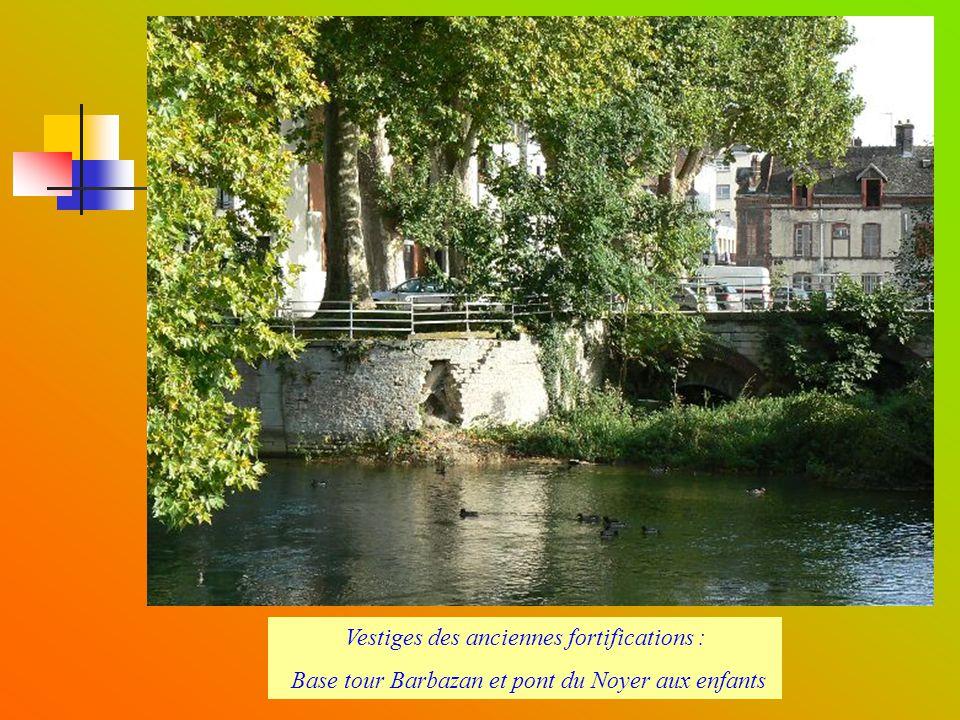 Canal Saint-Jacques (bras de Seine au cour Jacquin)
