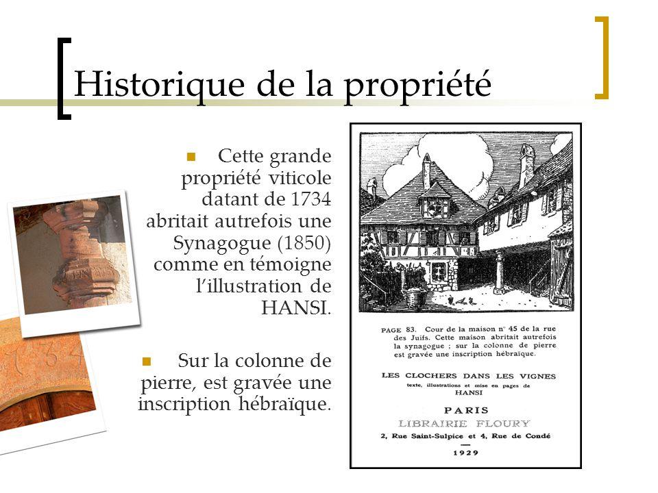 Historique de la propriété Cette grande propriété viticole datant de 1734 abritait autrefois une Synagogue (1850) comme en témoigne l'illustration de HANSI.