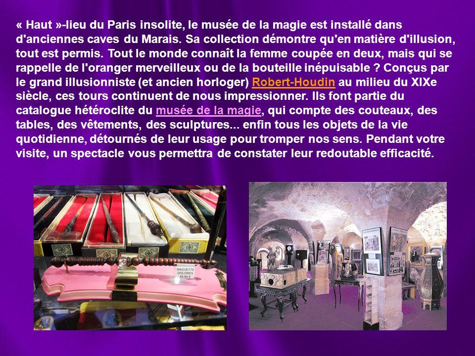 « Haut »-lieu du Paris insolite, le musée de la magie est installé dans d anciennes caves du Marais.