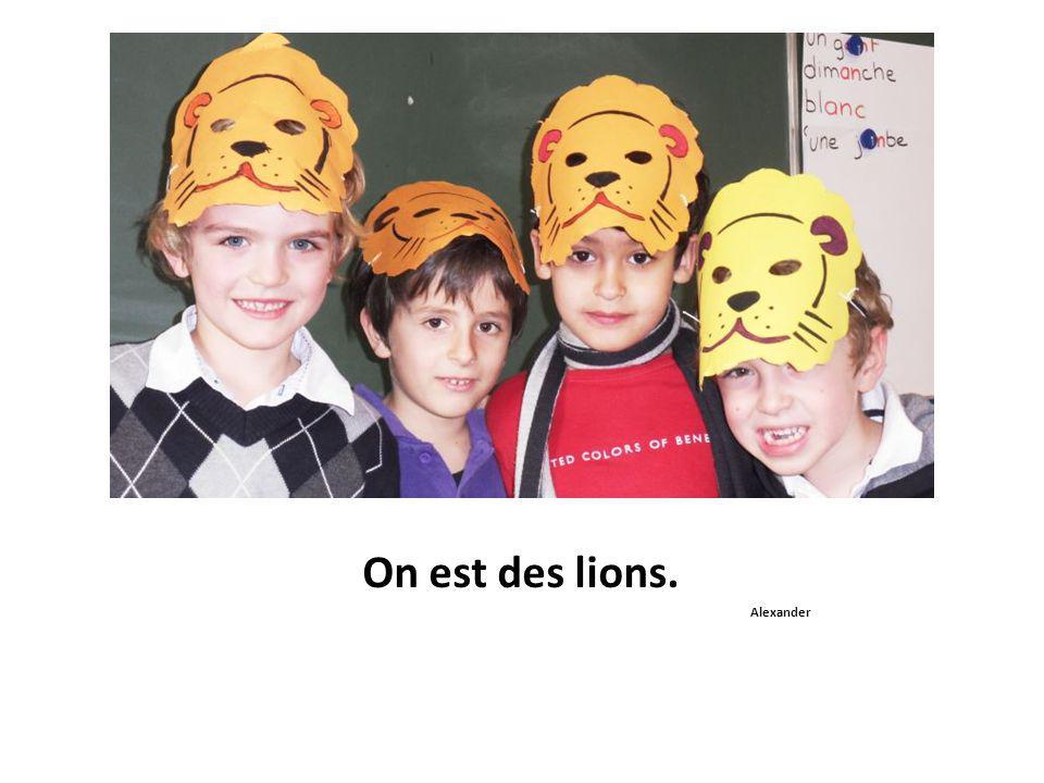 On est des lions. Alexander