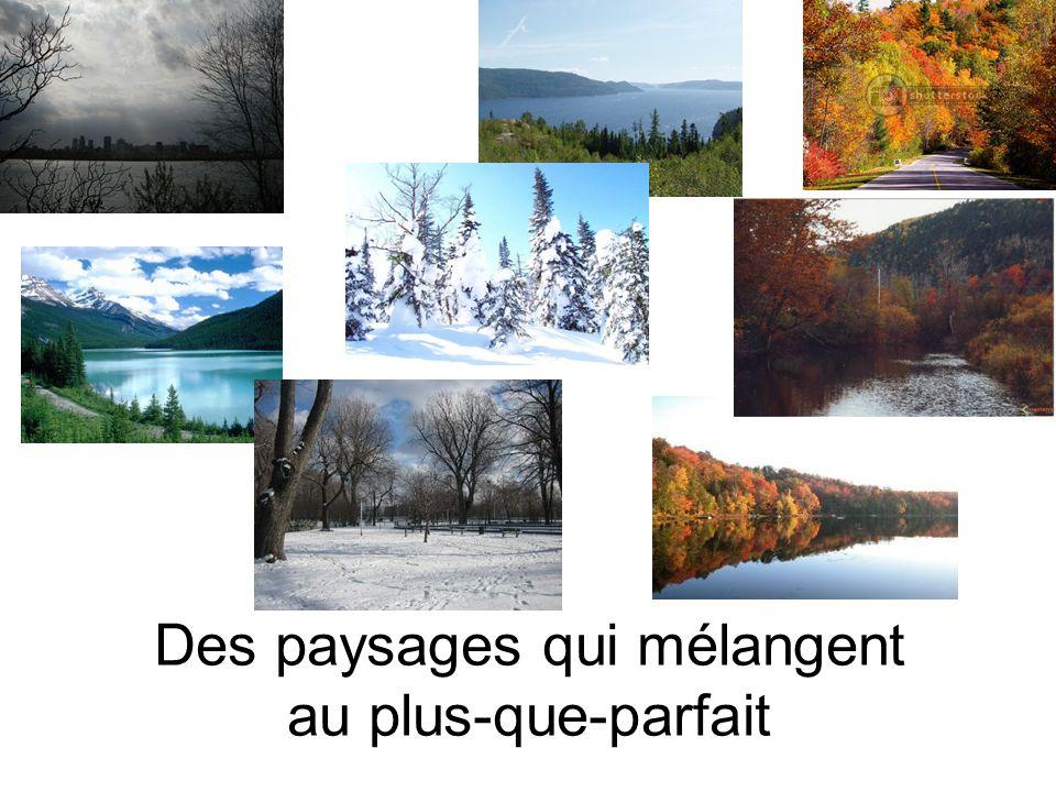 Des paysages qui mélangent au plus-que-parfait