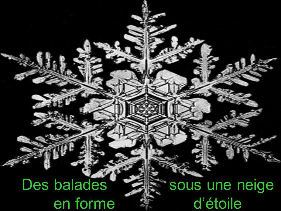 Des balades sous une neige en forme d'étoile