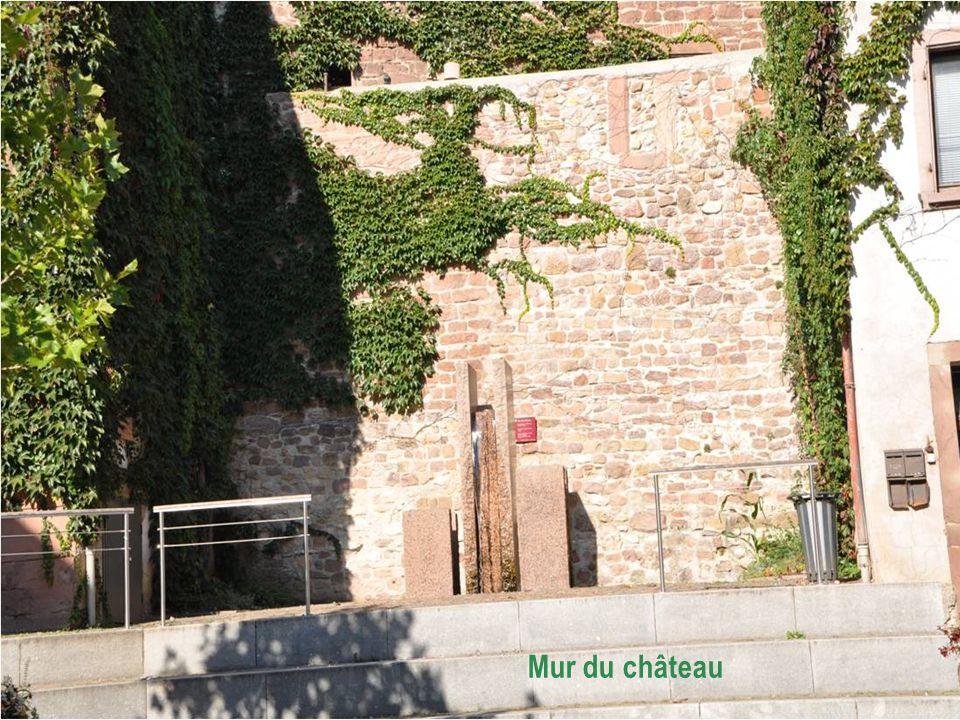 Mur du château, seul vestige du château fort Du XIIIème siècle Construit en petits moellons de grés.