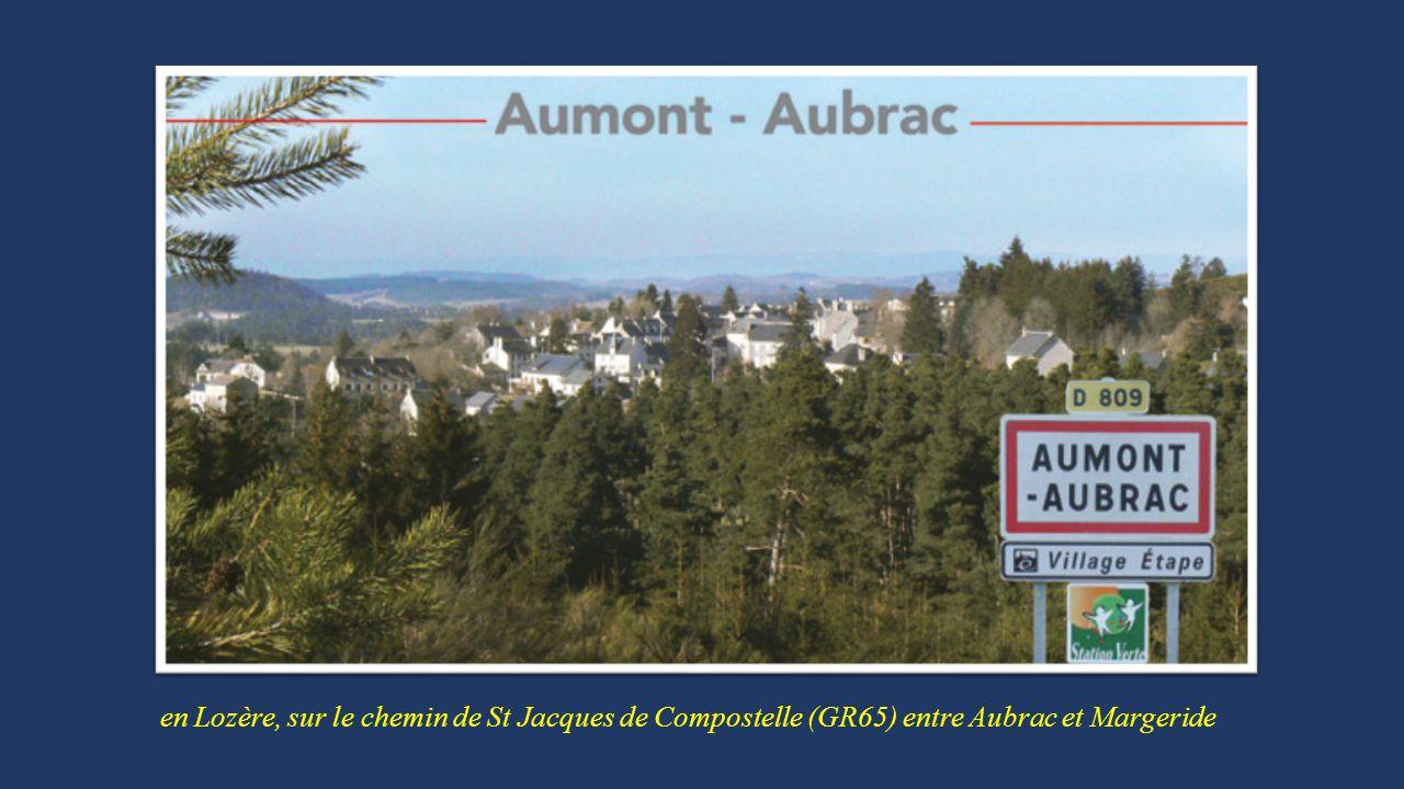 en Lozère, sur le chemin de St Jacques de Compostelle (GR65) entre Aubrac et Margeride