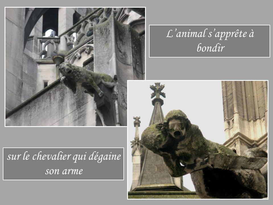sur le chevalier qui dégaine son arme L'animal s'apprête à bondir