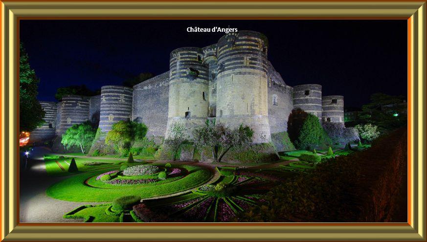 Château Langeais