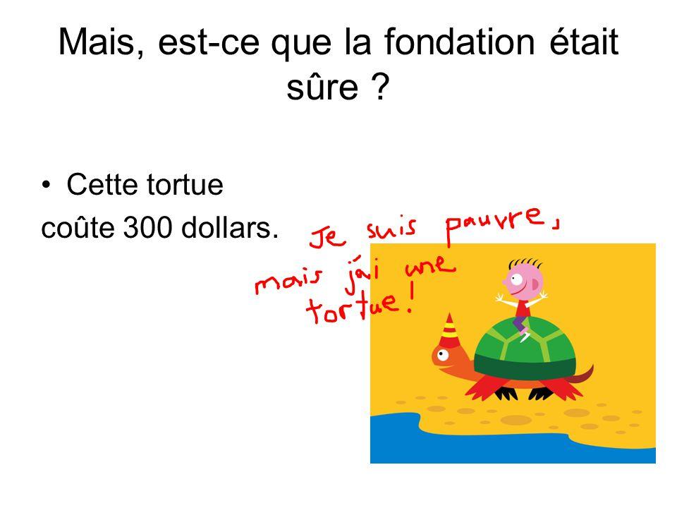 Mais, est-ce que la fondation était sûre ? Cette tortue coûte 300 dollars.
