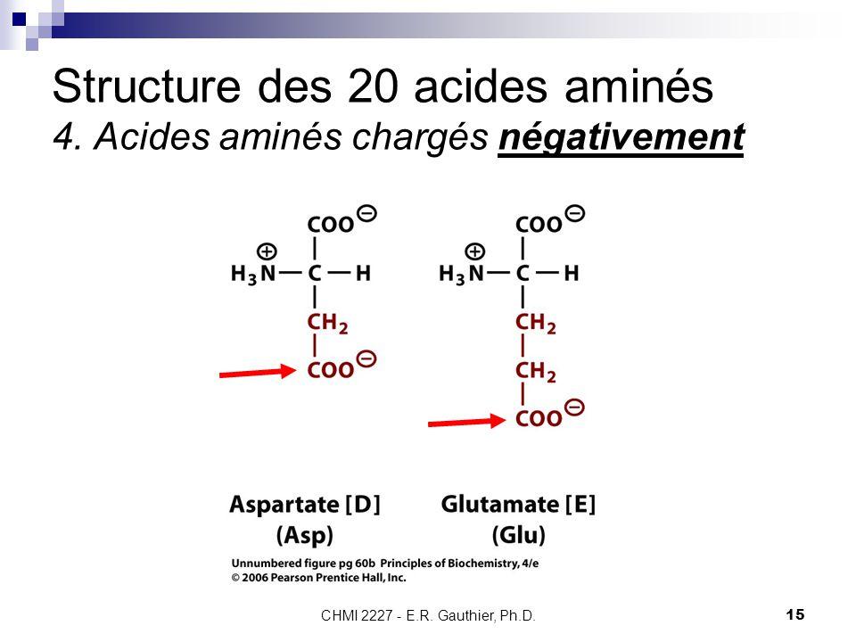 CHMI 2227 - E.R. Gauthier, Ph.D.15 Structure des 20 acides aminés 4. Acides aminés chargés négativement