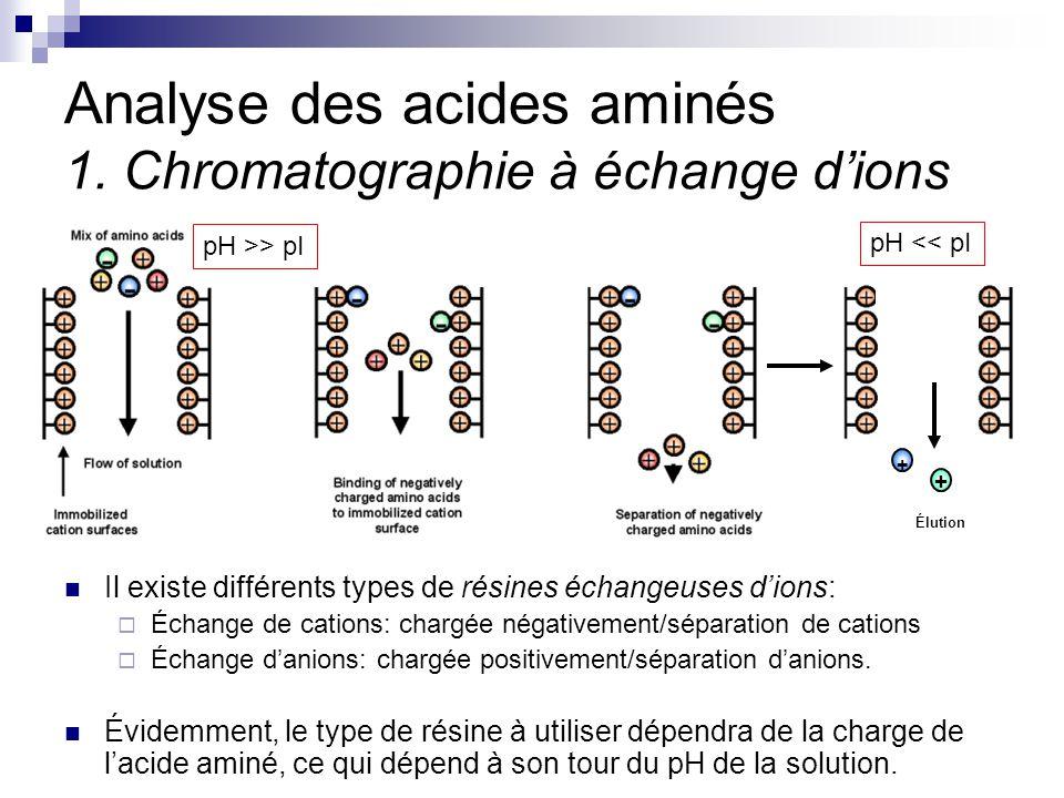 CHMI 2227 - E.R. Gauthier, Ph.D.20 Analyse des acides aminés 1. Chromatographie à échange d'ions Il existe différents types de résines échangeuses d'i