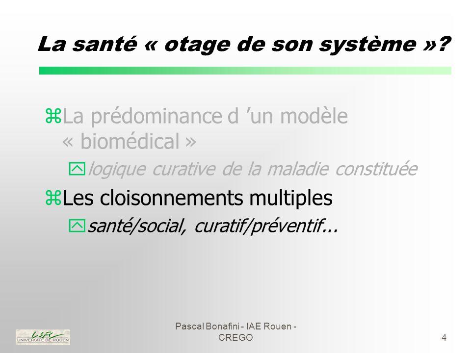 Pascal Bonafini - IAE Rouen - CREGO15 Les réseaux de cancérologie zQuelques remarques : yréseaux de médecine plutôt que de santé