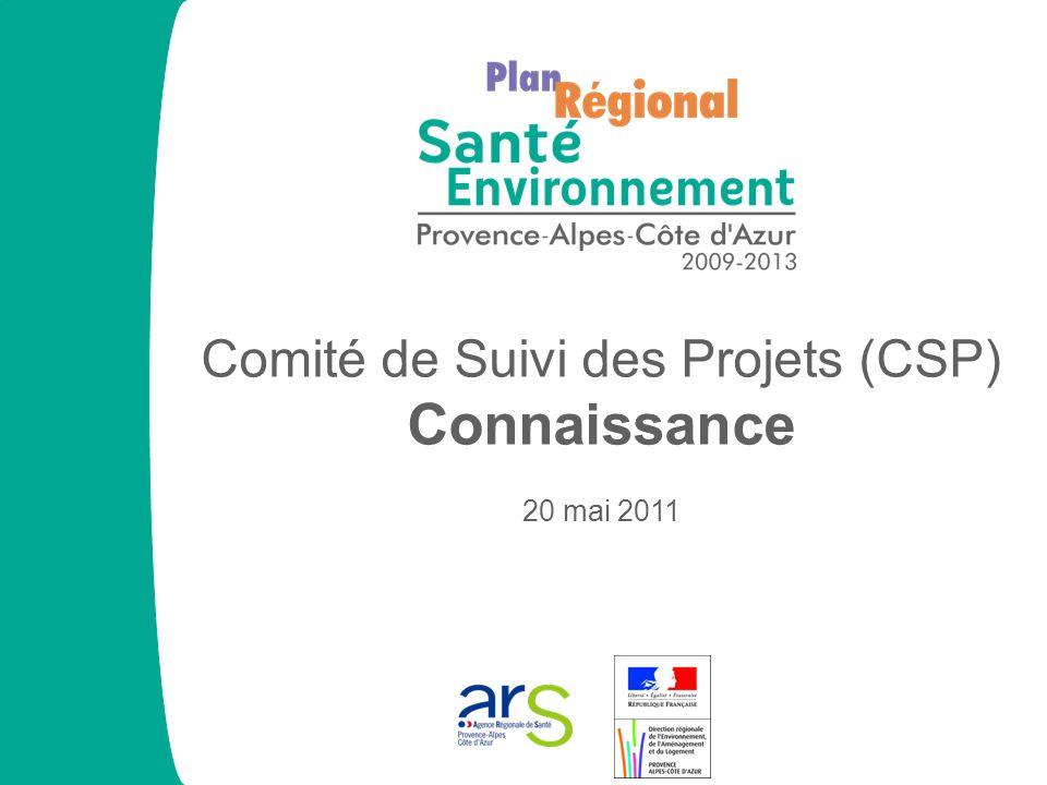 Comité de Suivi des Projets (CSP) Connaissance 20 mai 2011