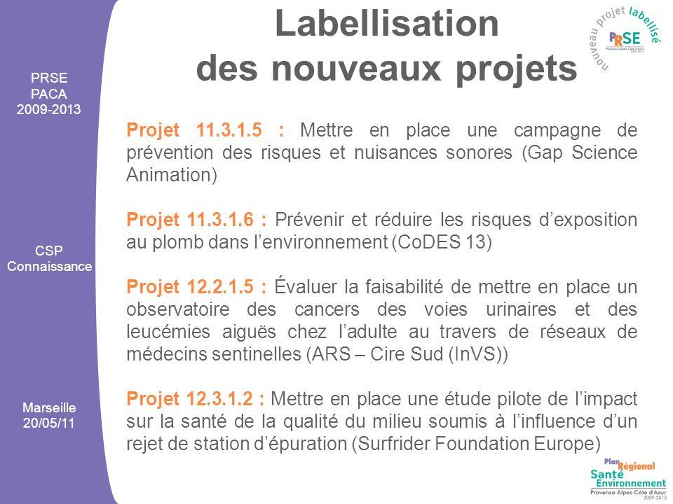 Labellisation des nouveaux projets PRSE PACA 2009-2013 CSP Connaissance Marseille 20/05/11 Projet 11.3.1.5 : Mettre en place une campagne de prévention des risques et nuisances sonores (Gap Science Animation) Projet 11.3.1.6 : Prévenir et réduire les risques d'exposition au plomb dans l'environnement (CoDES 13) Projet 12.2.1.5 : Évaluer la faisabilité de mettre en place un observatoire des cancers des voies urinaires et des leucémies aiguës chez l'adulte au travers de réseaux de médecins sentinelles (ARS – Cire Sud (InVS)) Projet 12.3.1.2 : Mettre en place une étude pilote de l'impact sur la santé de la qualité du milieu soumis à l'influence d'un rejet de station d'épuration (Surfrider Foundation Europe)