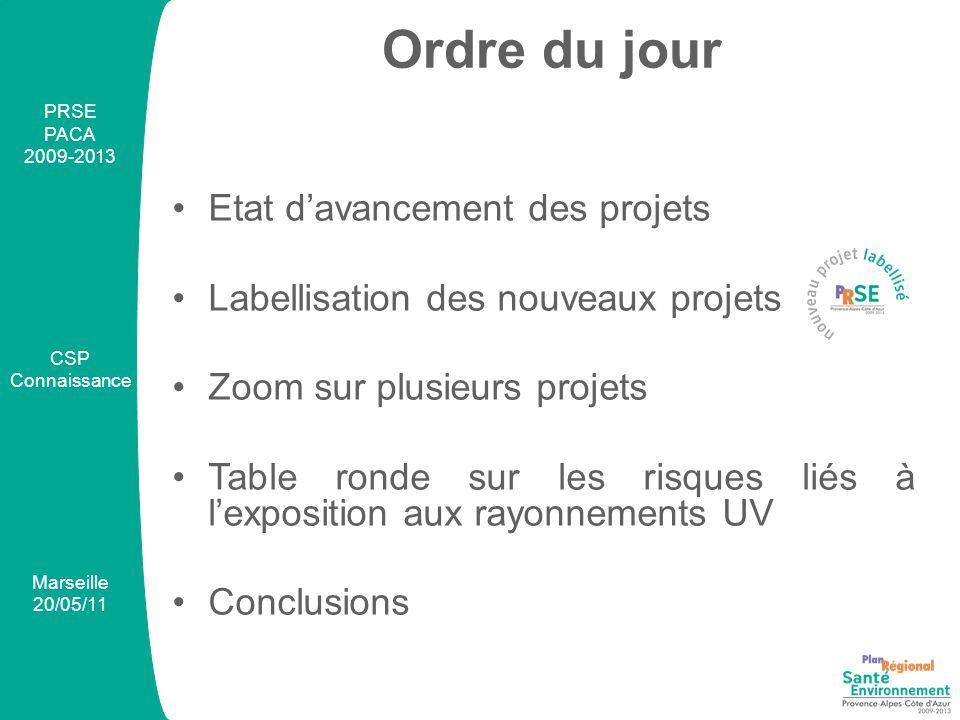Ordre du jour Etat d'avancement des projets Labellisation des nouveaux projets Zoom sur plusieurs projets Table ronde sur les risques liés à l'exposition aux rayonnements UV Conclusions PRSE PACA 2009-2013 CSP Connaissance Marseille 20/05/11