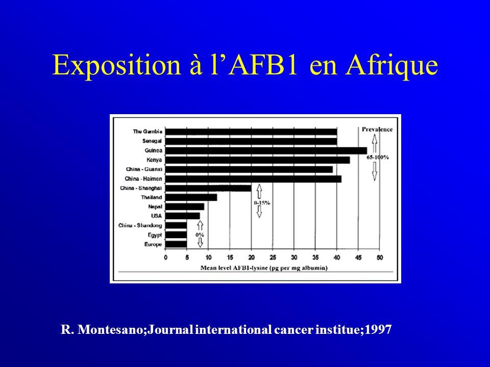Exposition à l'AFB1 en Afrique R. Montesano;Journal international cancer institue;1997