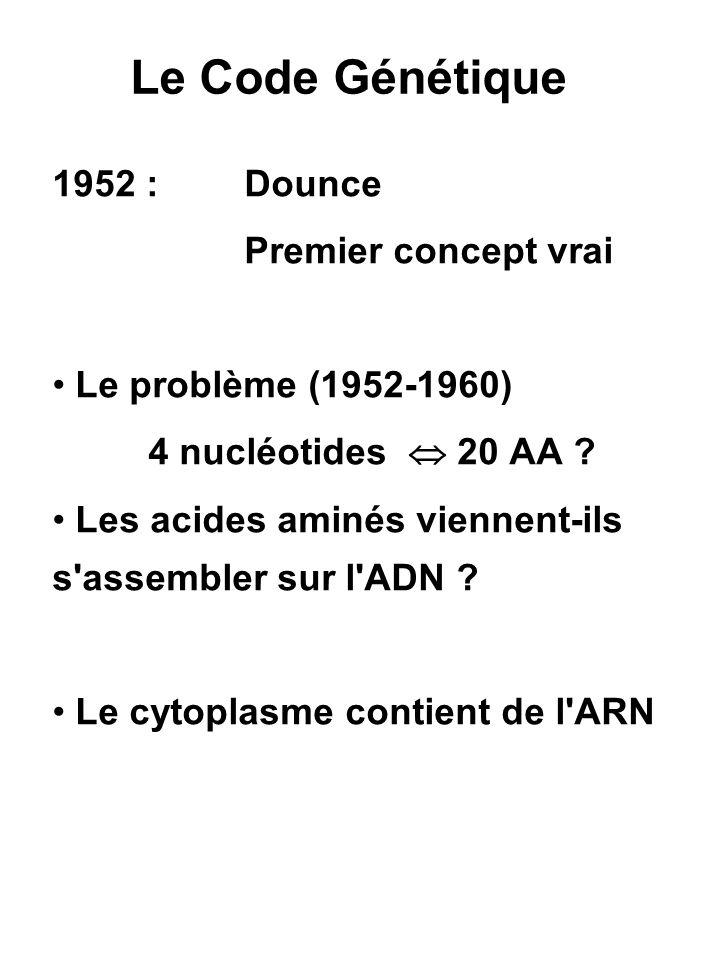 Théorie du choix arbitraire L.Orgel ARN : Pu Py Pu Py Pu Py...